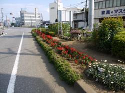 最優秀賞 並木一丁目健康クラブ(2)