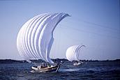 画像:帆曳船