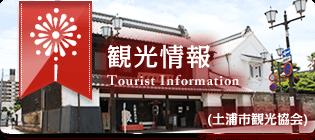 画像:観光情報