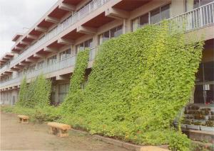 『【優秀賞】神立小学校』の画像