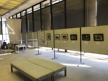 『文化財愛護の会写真展「小さな発見!ちょっと気になる市内の文化財」の様子(2)』の画像