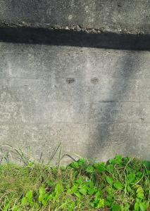 『『『目は口ほどにものを言う』の画像』の画像』の画像
