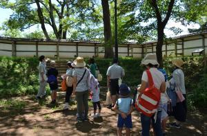 『亀城公園探検 塀(内)』の画像