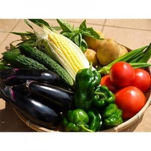 『野菜詰合せ』の画像
