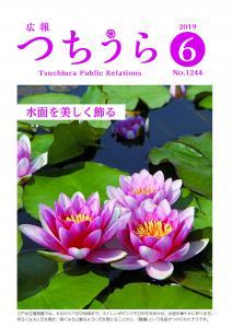2019.06上旬号表紙