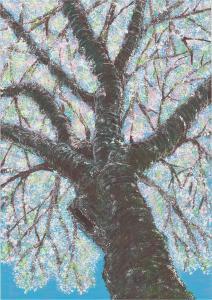 『市の木・市の花・市の鳥絵画コンクール優秀作品』の画像