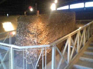 貝層断面展示施設の内部